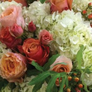 Wholesale Florist Koehler Dramm