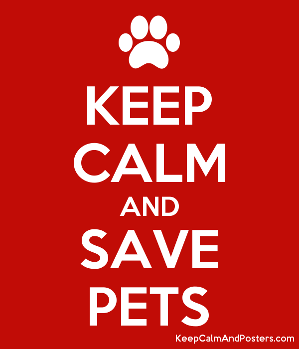 5769928_keep_calm_and_save_pets